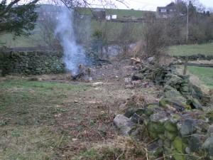 With all the undergrowth gone, you can see the true state of the dry stone wall,