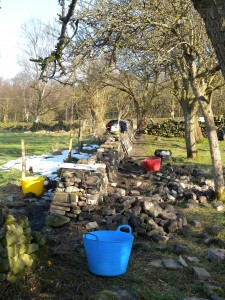Dry stone walling - Day 19