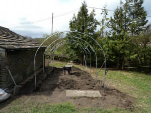 It takes a couple of hours to get the hoops and ridge pole installed.  Then the corner stablisers are installed.The stone step from the old chicken house needs centering.