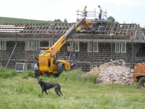 The telehandler is used to get bricks and mortar up to roof level. Zep is on patrol waiting for any disgarded Jaffa cakes.