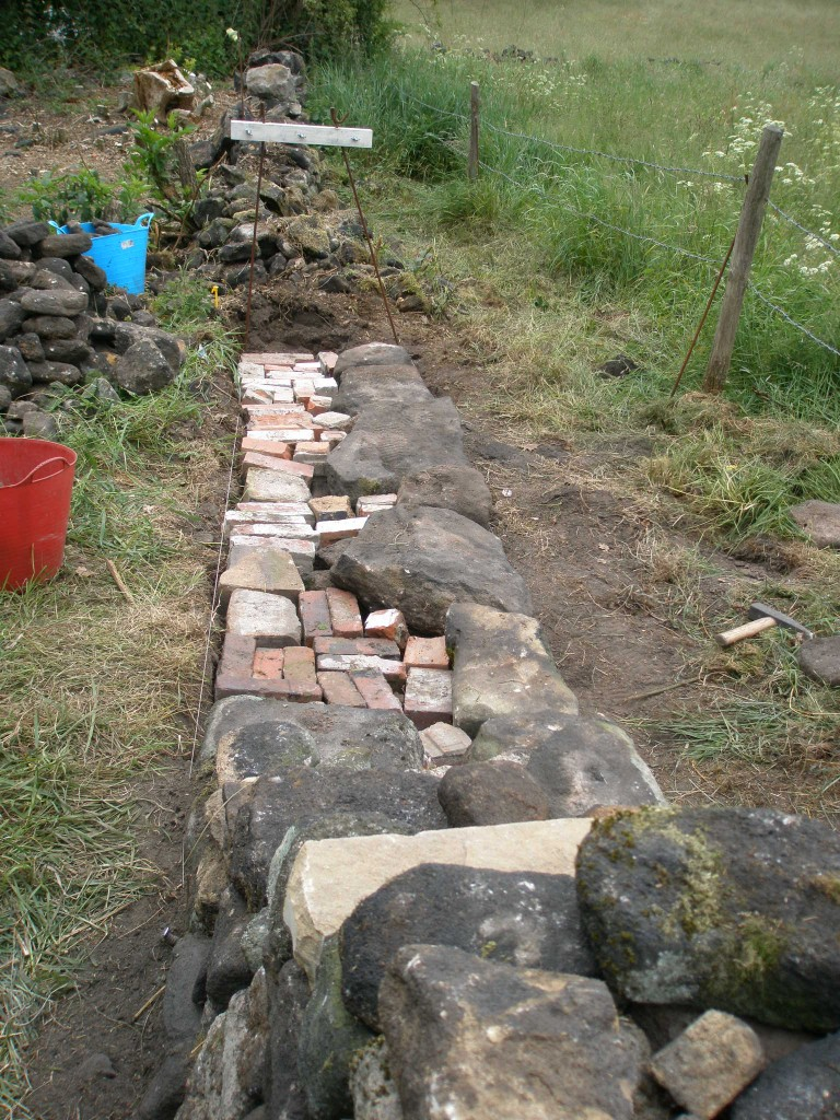 The last section of the orchard wall has been started.  A gate will be installed here roughly where the blue trug is.