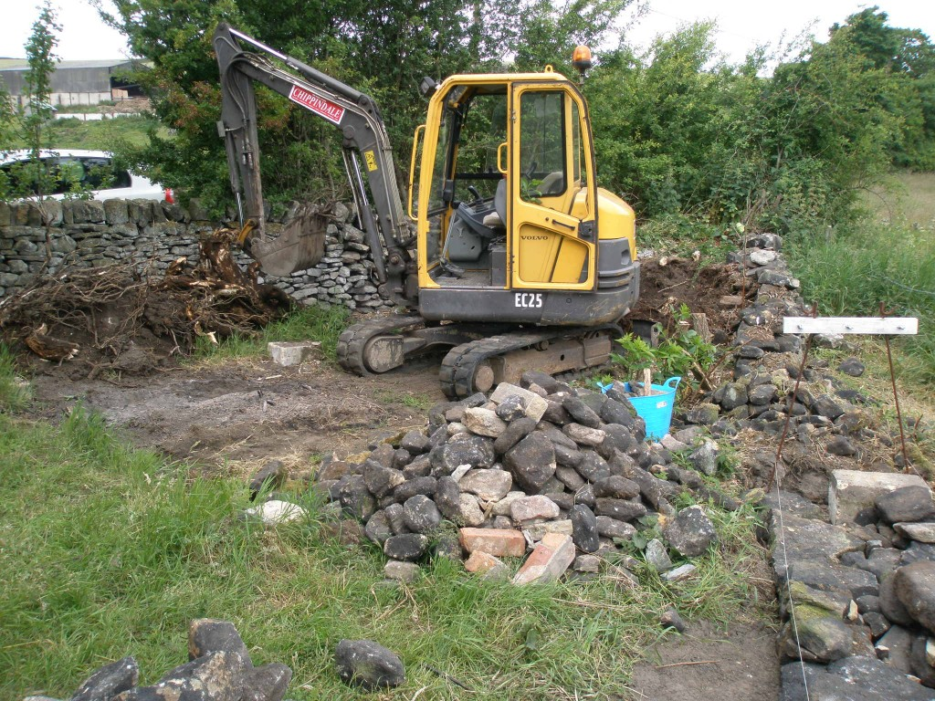 The main objective here was to remove the old roots and tree stumps from this corner of the orchard.