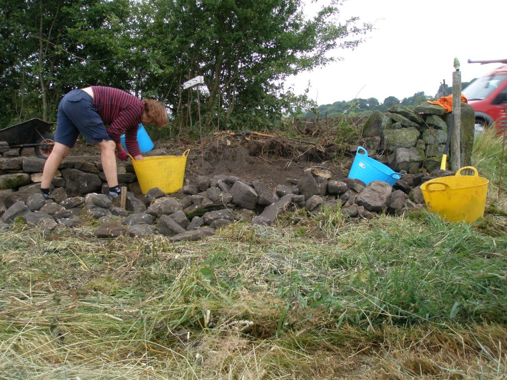 Now working in the adjoining field and working towards the old stone gatepost