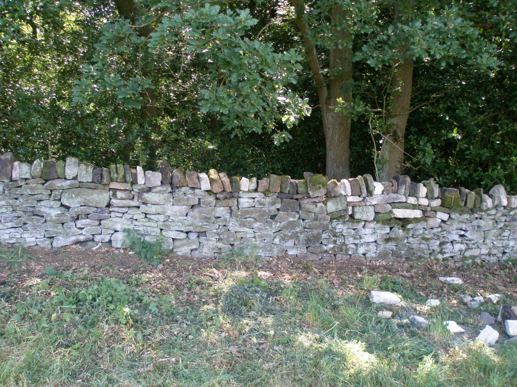 Not exactly perfect, but better than it was.  After all, dry stone walling is an abudance of imperfections.