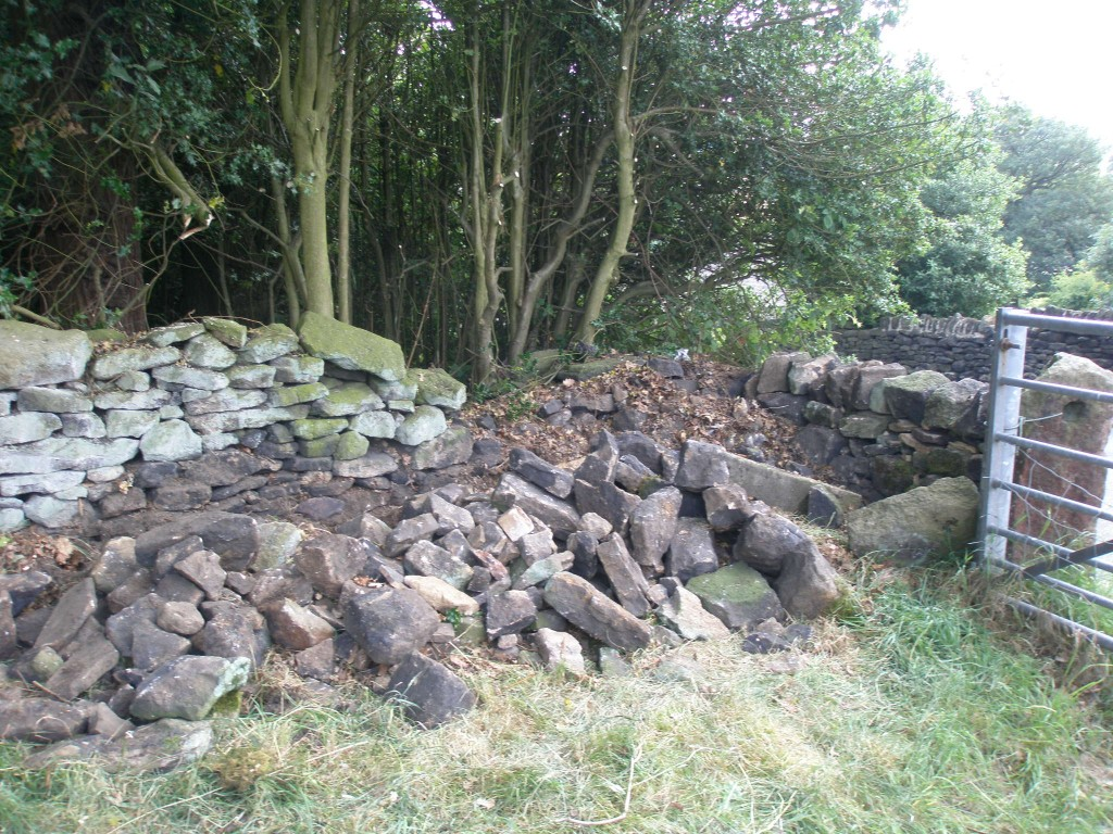 The wall is in pretty bad shape here, but most of the stone seemed to be buried in the grass!