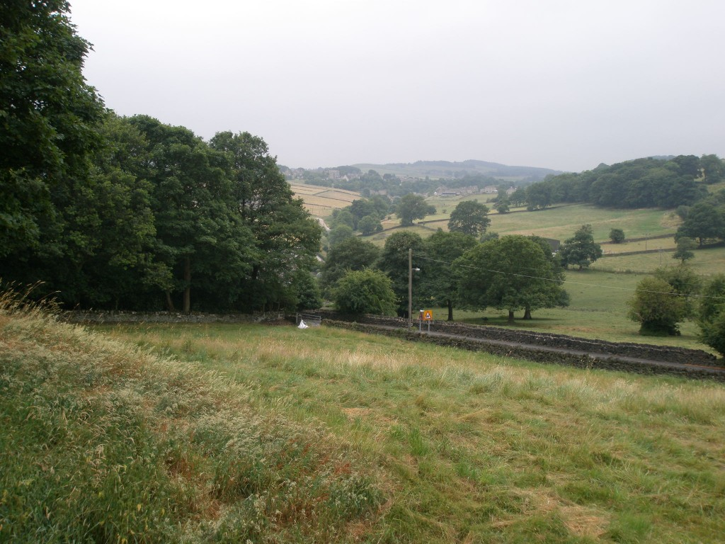 You can see the newly built wall along Hagg Wood (down to the gate with the large white bag).