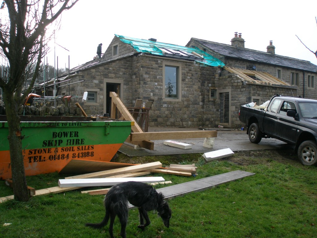 Zep on the hunt for a cornish pasty.  None here.  In the background is the half truss that will form part of the canopy for the porch.  The new kitchen wall is revealed now the scafffolding is down.