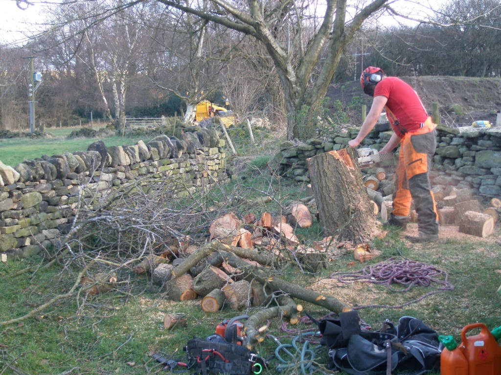 My 14 inch chainsaw just wasn't man enough to deal with this tree.  Chris LeRoy - our local tree surgeon - happily (and very carefully) dealt with what was left.  He logged all of the big wood for us so that it can be easily chopped into logs for the fire.