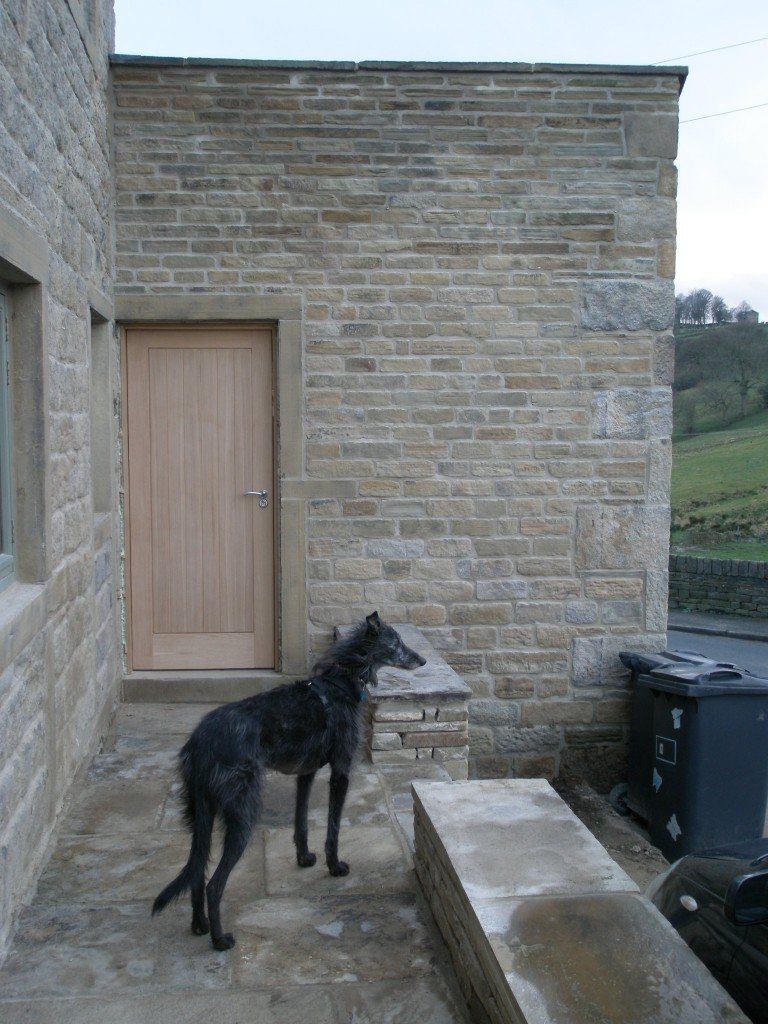 The study (that used to be the old coal hole) now has a new exterior door.  Zep is very proud of his work - he is the only Lurcher that has learnt to hang an external door!