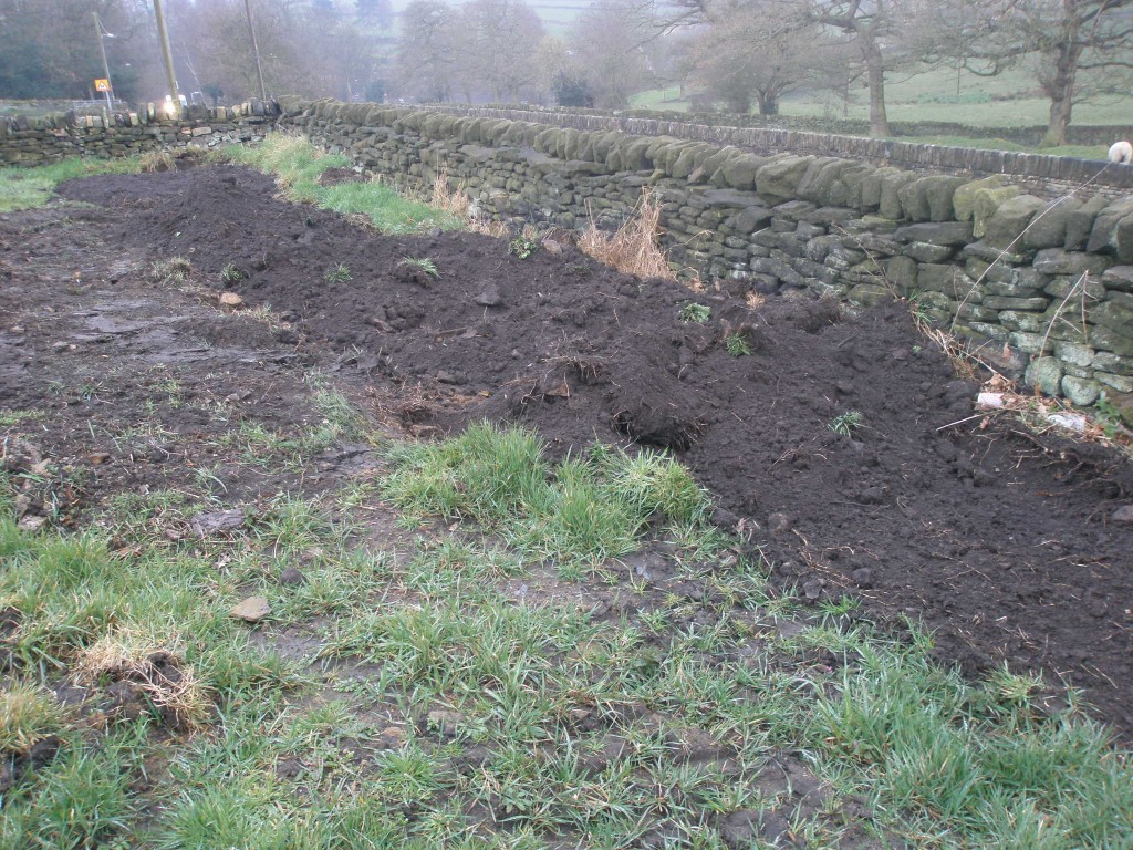 The original vegetable patch was 6ft x 6ft and at the far end.  Since we had an 8 ton excavator onsite to relay the top soil in the top field, it seemed like a good idea to make it a bit bigger.  It is now about 6ft x 40ft!