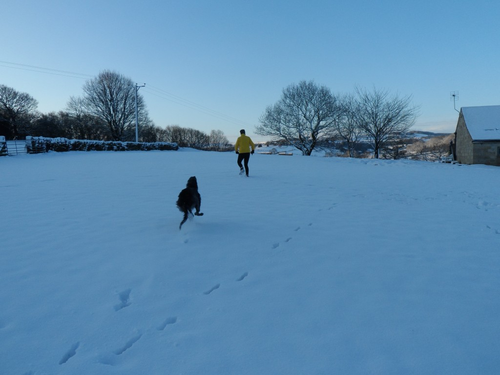 Zep running in the snow