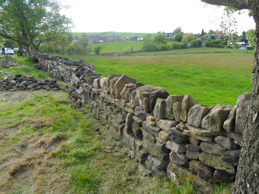 You can see the wiggles on both sides of the wall.  Plus we also have a fair amount of stone to move before we can start moving right up to this wall.