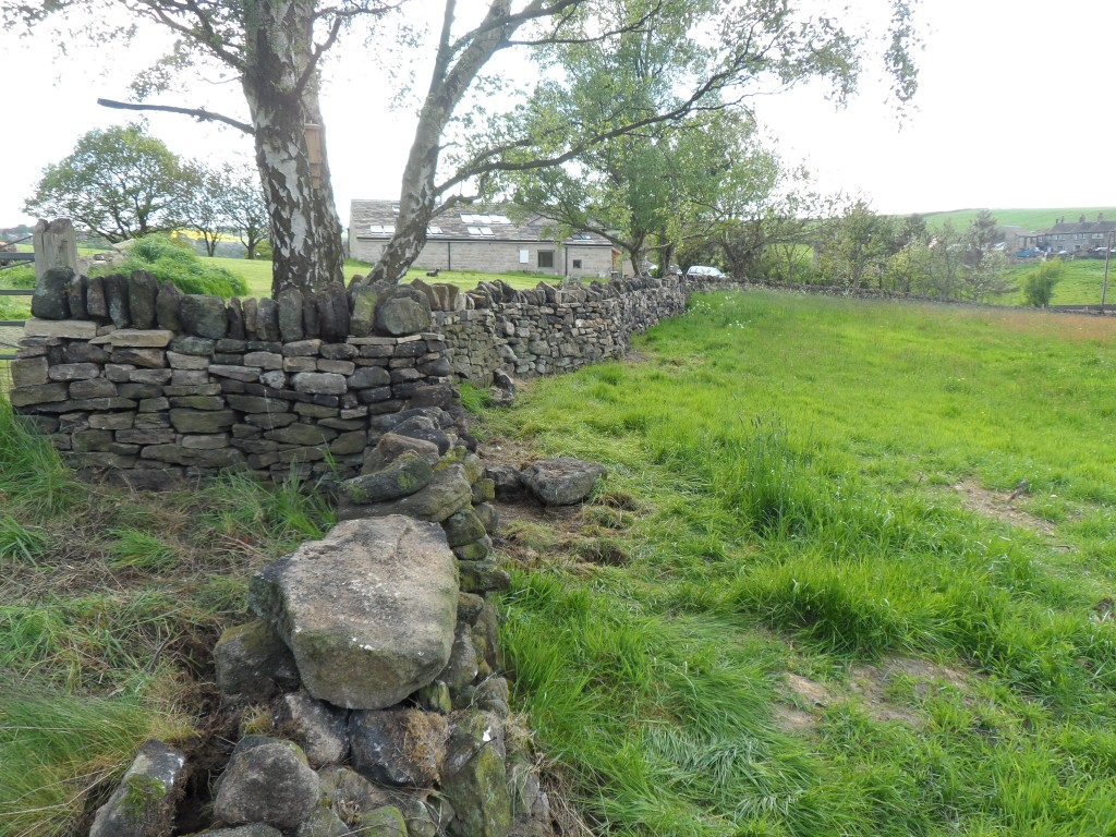 The fields on this side of the wall don't belong to us so for now we have just had a bit of a tidy up.