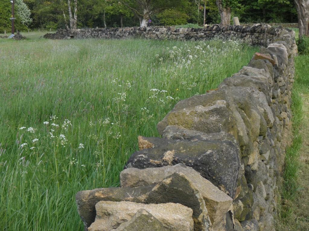 "It is just over 110 metres in length and the original ""test section"" of wall is in the far distance next to the furthest tree.  With each metre of wall containing around 1 tonne of stone, this has been a bit of a labour of love over the last couple of years."