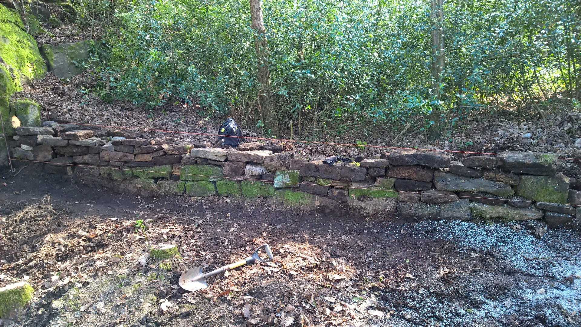 We believe that this is the boundary wall between the old quarry that was in the bottom field and Hagg Wood.  According to the old maps, this quarry was no longer used from about 1899.  Most of the stone for the wall was under the piles of leafs.